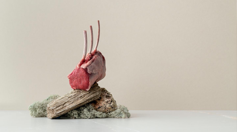 Fennopromo brändikuva liha